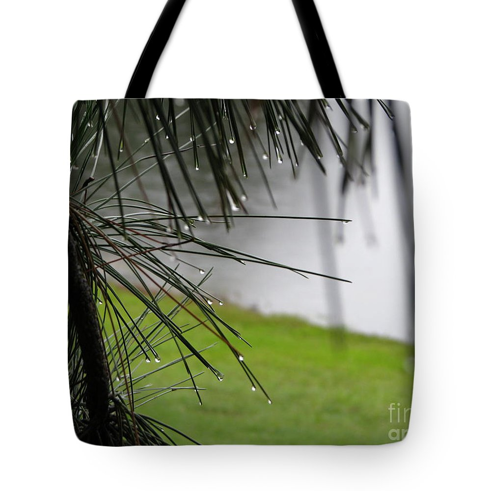 Lakes Tote Bag featuring the photograph Elements by Greg Patzer