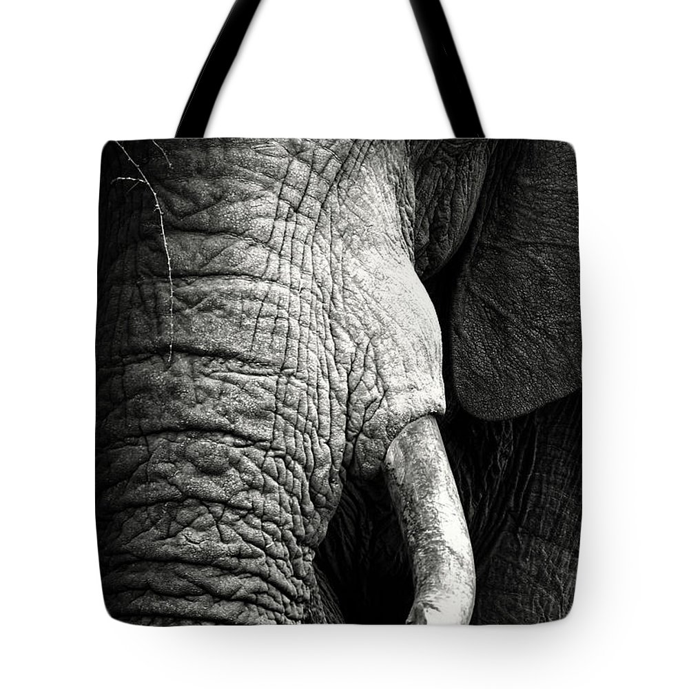 Elephant Tote Bag featuring the photograph Elephant close-up portrait by Johan Swanepoel