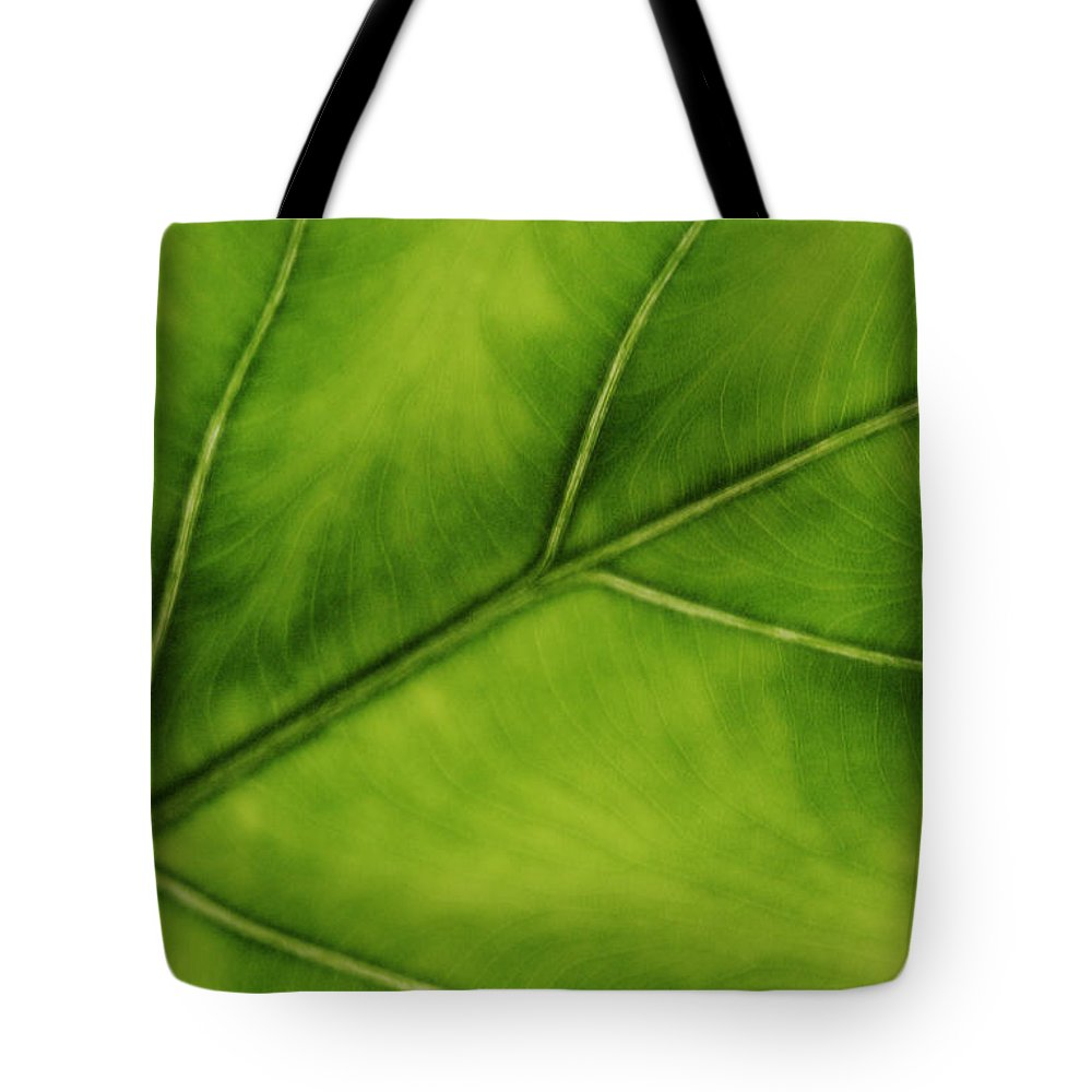 Leaf Tote Bag featuring the photograph Elephant Ear by Marilyn Hunt