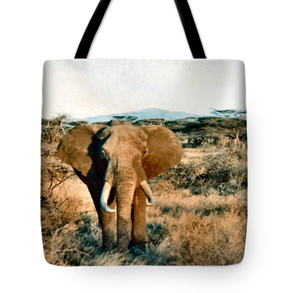 Elephant Tote Bag featuring the photograph Elephant Eyes by Lin Grosvenor