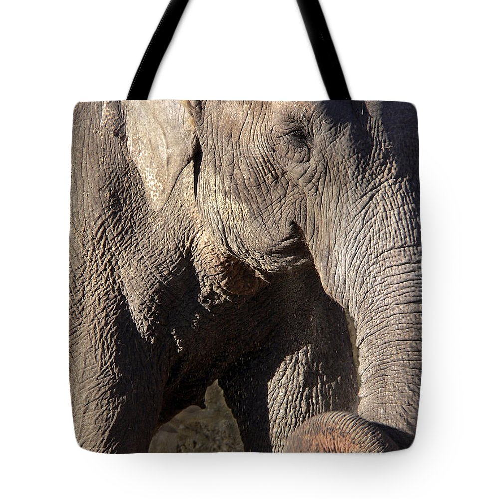 Elephant Tote Bag featuring the photograph Elephant by Steven Sparks