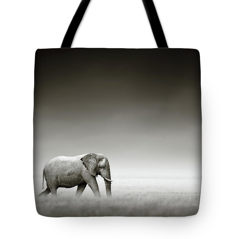 Together Tote Bags