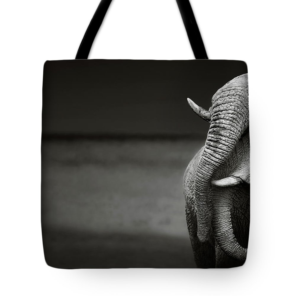 Elephant; Interaction; Touch; Trunk; Communicate; Head; Two; Behavior; Africa; Black; White; Monochrome; Art; Artistic; Loxodonta; Africana; Compassion; Affection; Animal; Mammal; Desert; Etosha; Nobody; Safari; Togetherness; Together; Wild; Wilderness; Wildlife Tote Bag featuring the photograph Elephants interacting by Johan Swanepoel