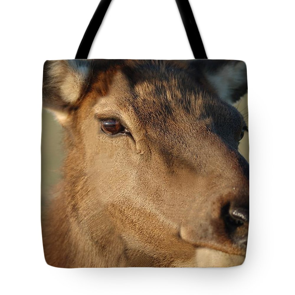 Nature Tote Bag featuring the photograph Elk by D Nigon