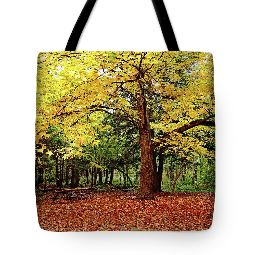 Elora Tote Bag featuring the photograph Elora Gorge Campsite In Fall by Debbie Oppermann