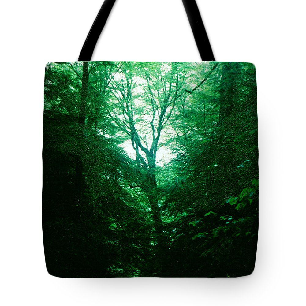 Emerald Tote Bag featuring the photograph Emerald Glade by Seth Weaver