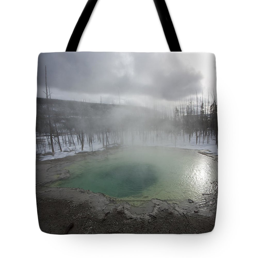 Landscape Tote Bag featuring the photograph Emerald Green Spring by Mary Haber