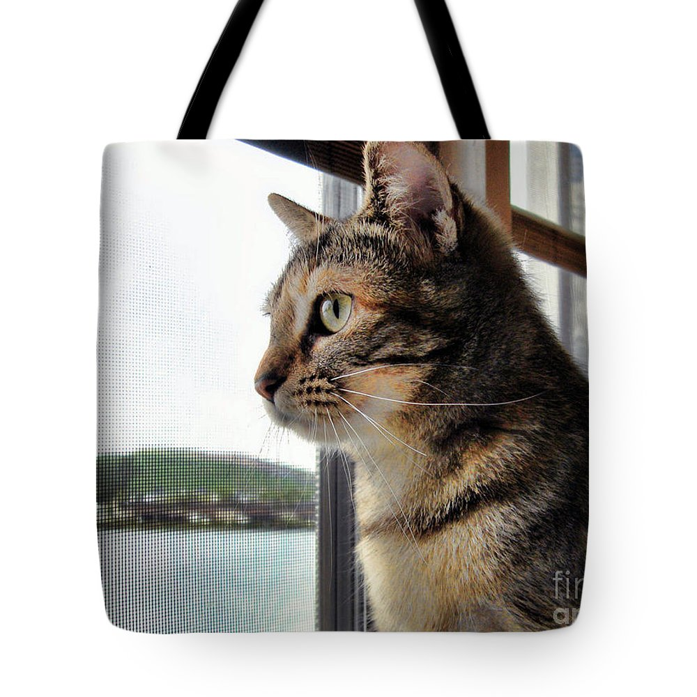 Cat Tote Bag featuring the photograph Emma Again by Nora Martinez