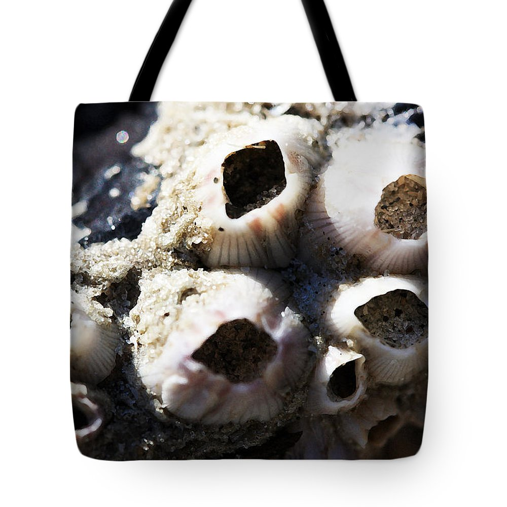 Barnicle Tote Bag featuring the photograph Empty by Mary Haber