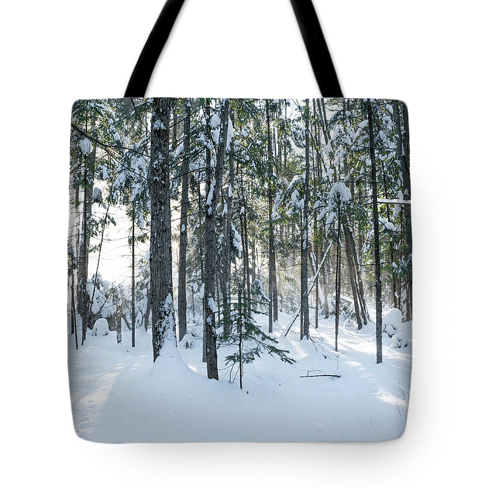 Snow Tote Bag featuring the photograph Enchante by Audrey Wilkie
