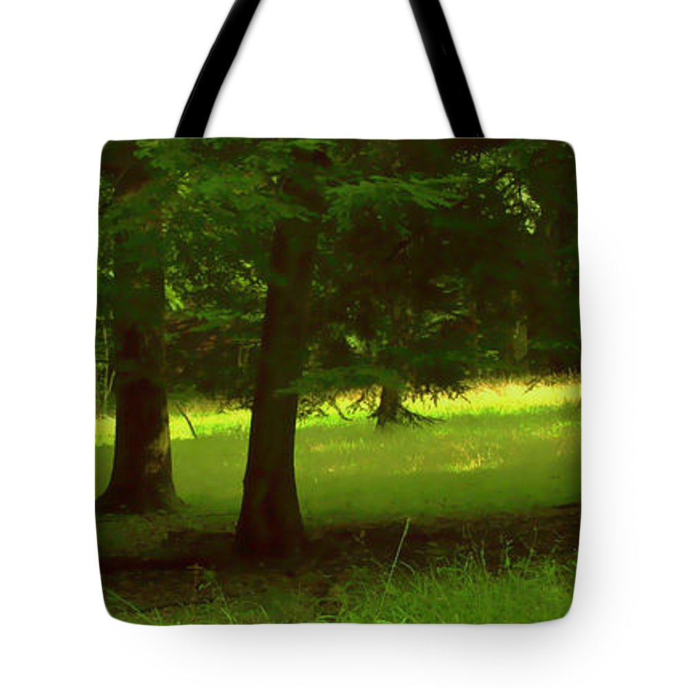 Nature Tote Bag featuring the photograph Enchanted Forest by Linda Sannuti