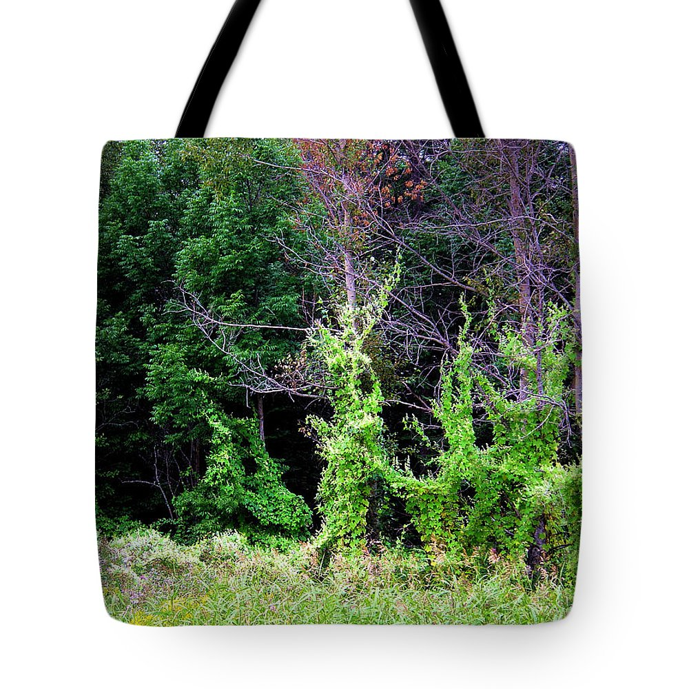 Pine Falls Manitoba Vines Landscape Tote Bag featuring the photograph Enchanted by Joanne Smoley