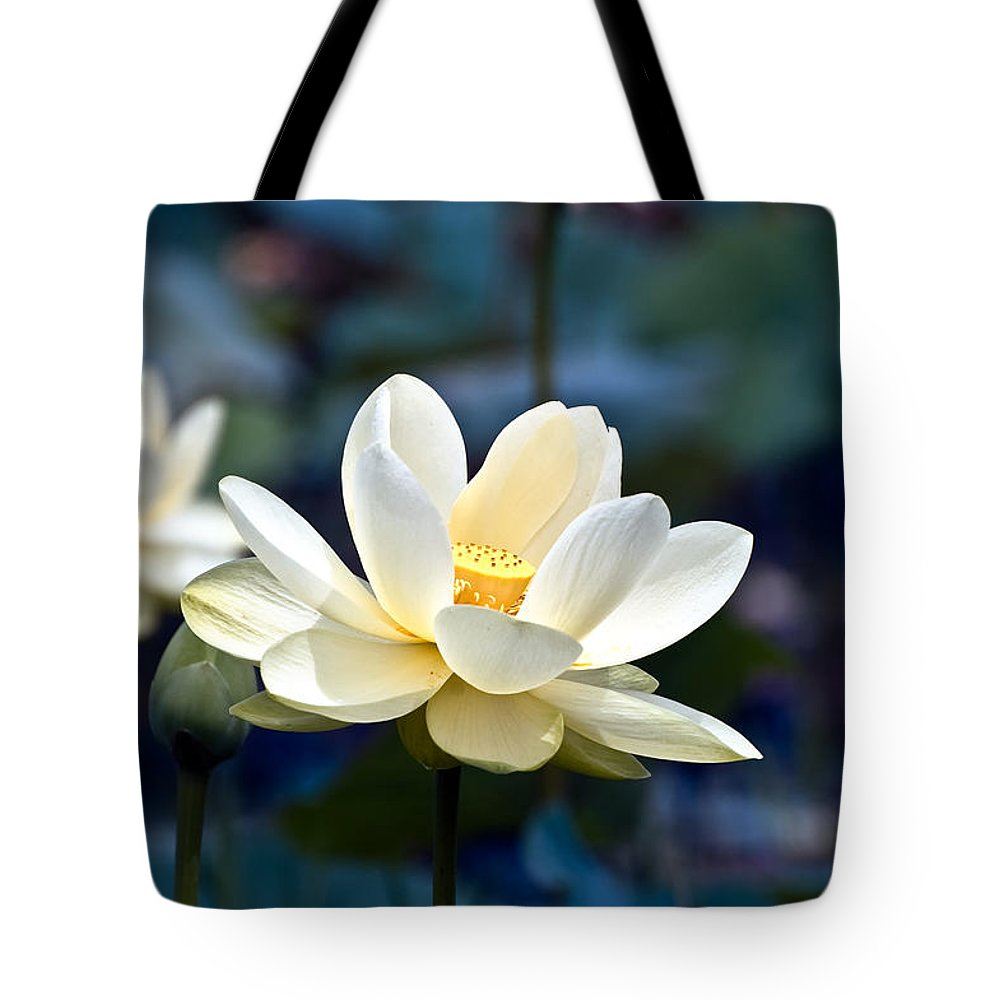 Lotus Tote Bag featuring the photograph Enchanting Lotus by Rich Leighton