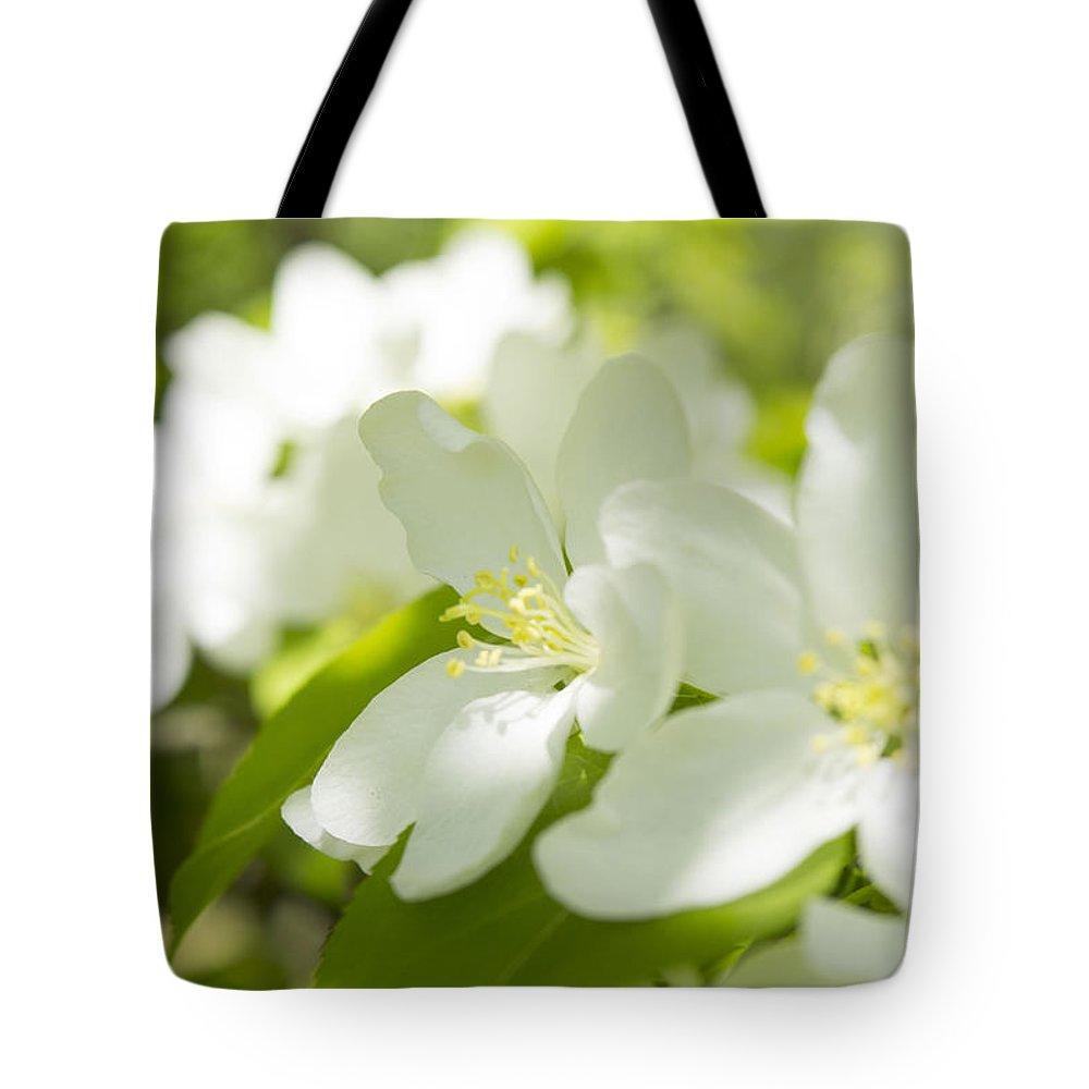 Apple Blossom Tote Bag featuring the photograph Encyclopedia Of Spring Image Apple Blossom by Irina Effa