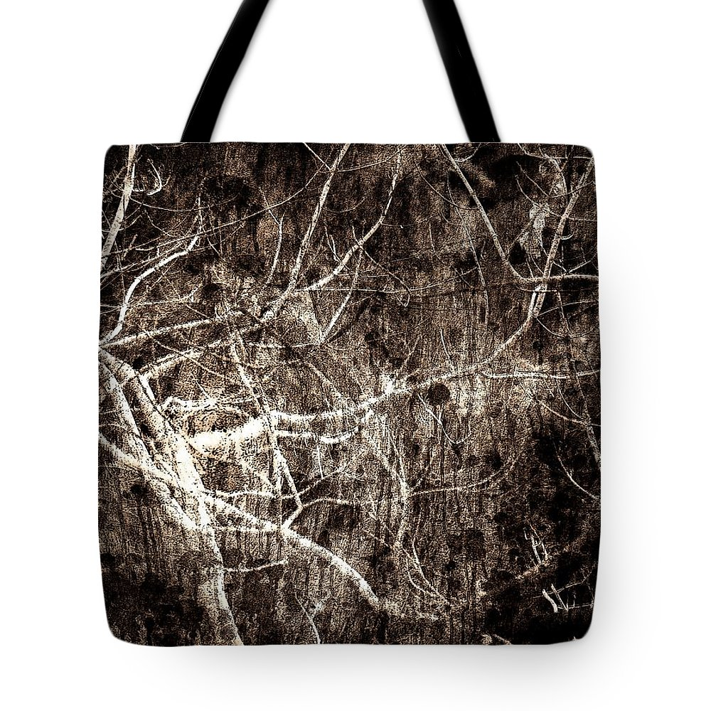 Tree Tote Bag featuring the photograph Endless by Gaby Swanson