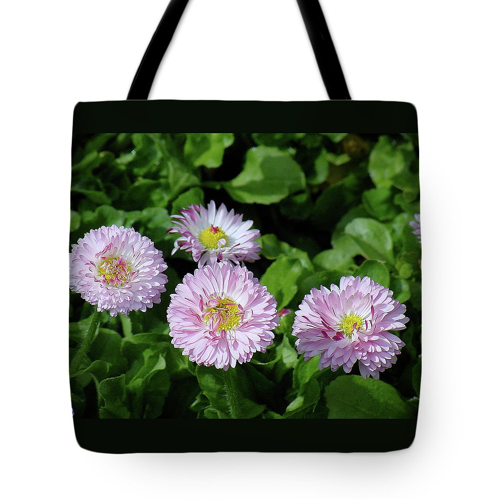 Flower Tote Bag featuring the photograph English Daisies by Shirley Heyn