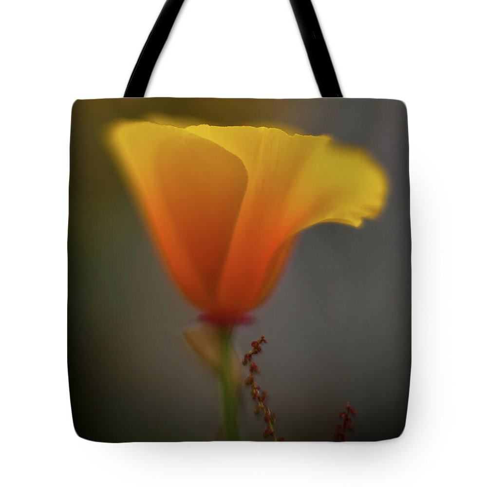 Poppy Tote Bag featuring the photograph Ephemeral Poppy by Mike Reid