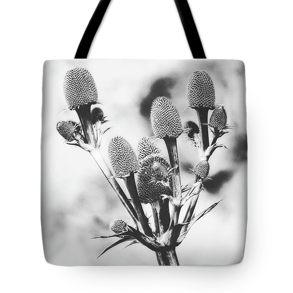 Beautiful Tote Bag featuring the photograph Eryngium #flower #flowers by John Edwards