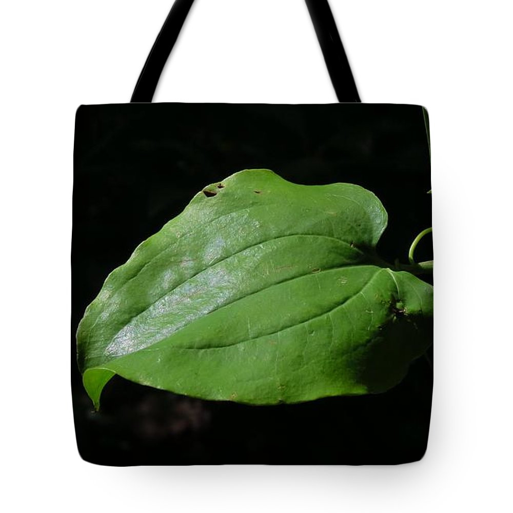 Green Leaf Tote Bag featuring the photograph Essence Of A Leaf by Anita Adams