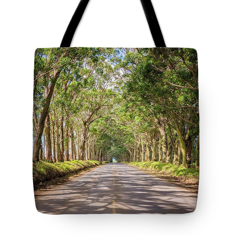 Tree Tunnel Kauai Hawaii Tote Bag featuring the photograph Eucalyptus Tree Tunnel - Kauai Hawaii by Brian Harig