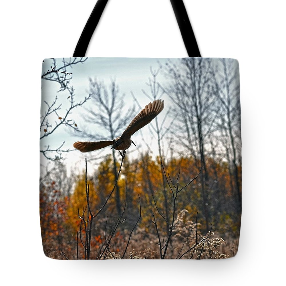 American Woodcock Tote Bag featuring the photograph Evanescent Beauty Of Woodlands by Asbed Iskedjian