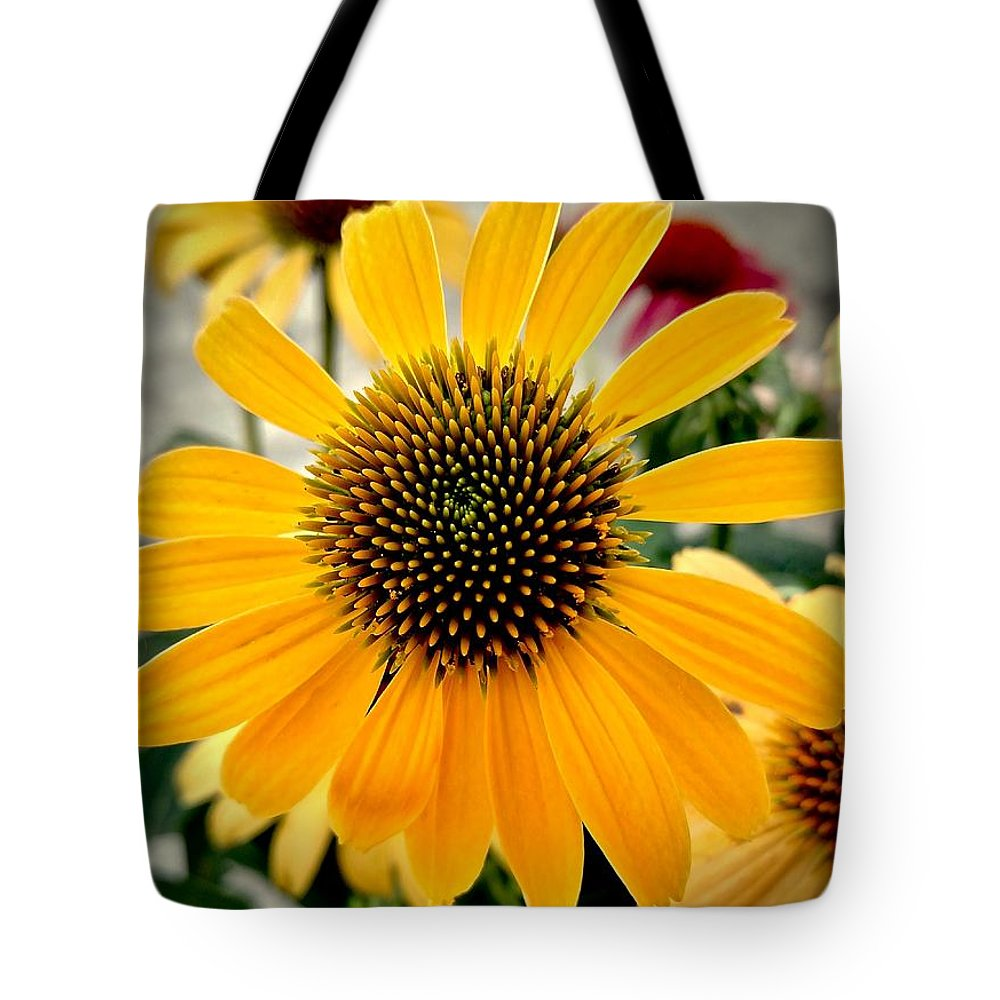 Evening Tote Bag featuring the photograph Evening Flower by Amanda Myers