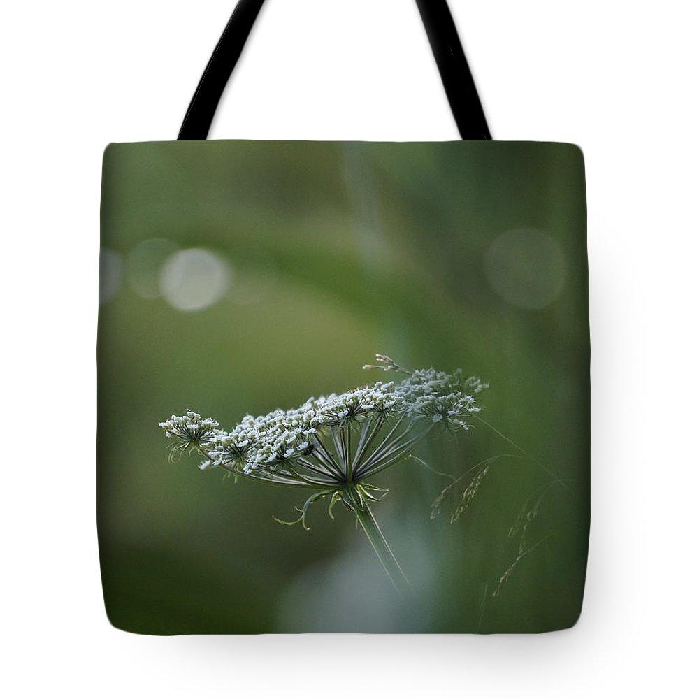 Flower Tote Bag featuring the photograph Evening Flower by Tiina M Niskanen