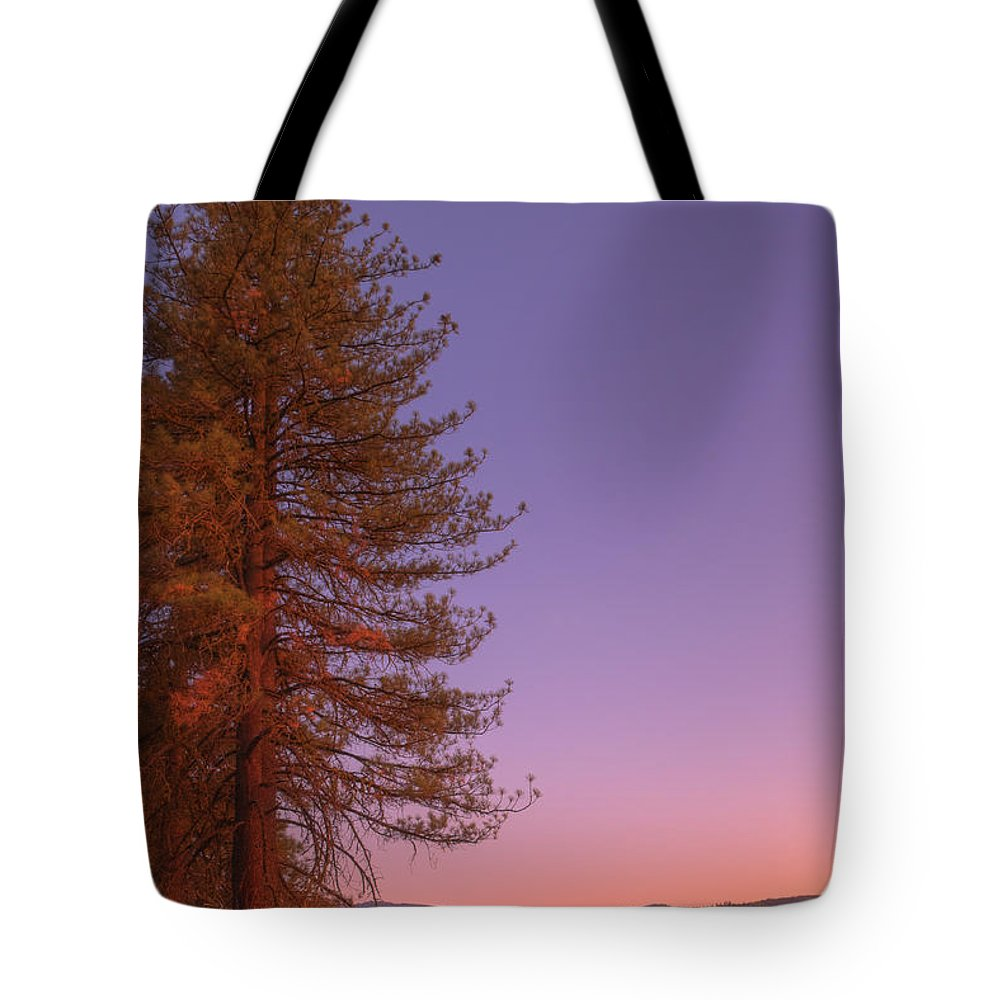 Valley Tote Bag featuring the photograph Evening In The Valley by Mick Burkey