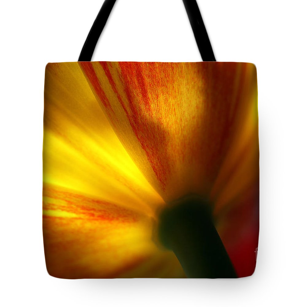 Spring Tote Bag featuring the photograph Eventually by Amanda Barcon