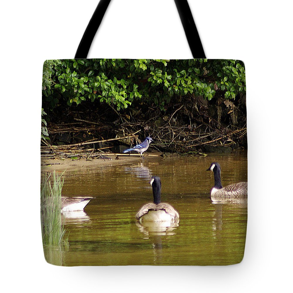 2d Tote Bag featuring the photograph Ever Get The Feeling... by Brian Wallace
