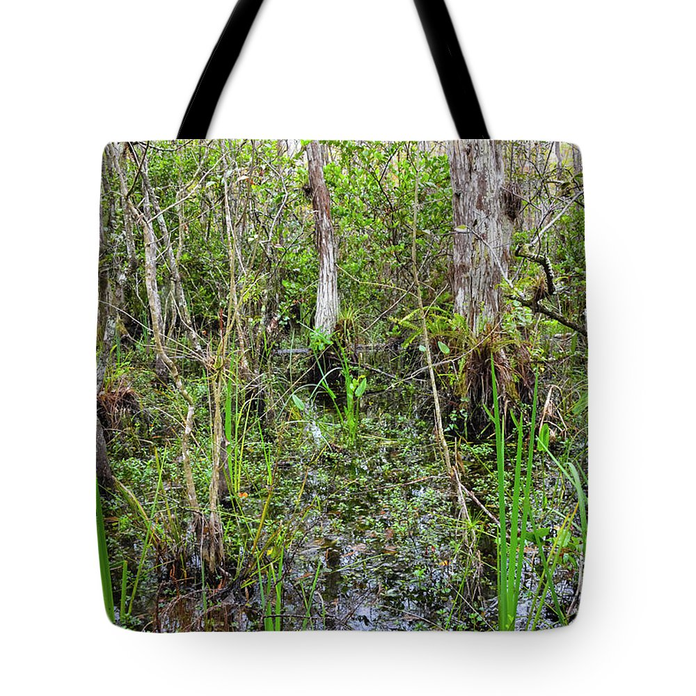 The Everglades Tote Bag featuring the photograph Everglades Swamp Two by Bob Phillips