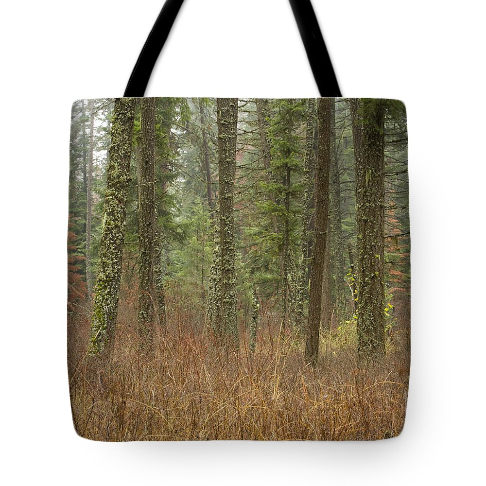 Fir Tote Bag featuring the photograph Evergreen Fog by Idaho Scenic Images Linda Lantzy