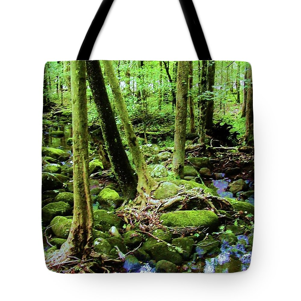 River Tote Bag featuring the photograph Evolution Of A Forest In Spring by Diana Dearen