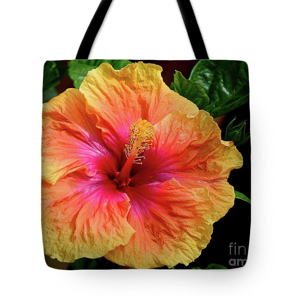 Exotic hibiscus flower by kaye menner tote bag for sale by kaye menner exotic hibiscus flower tote bag featuring the photograph exotic hibiscus flower by kaye menner by kaye izmirmasajfo