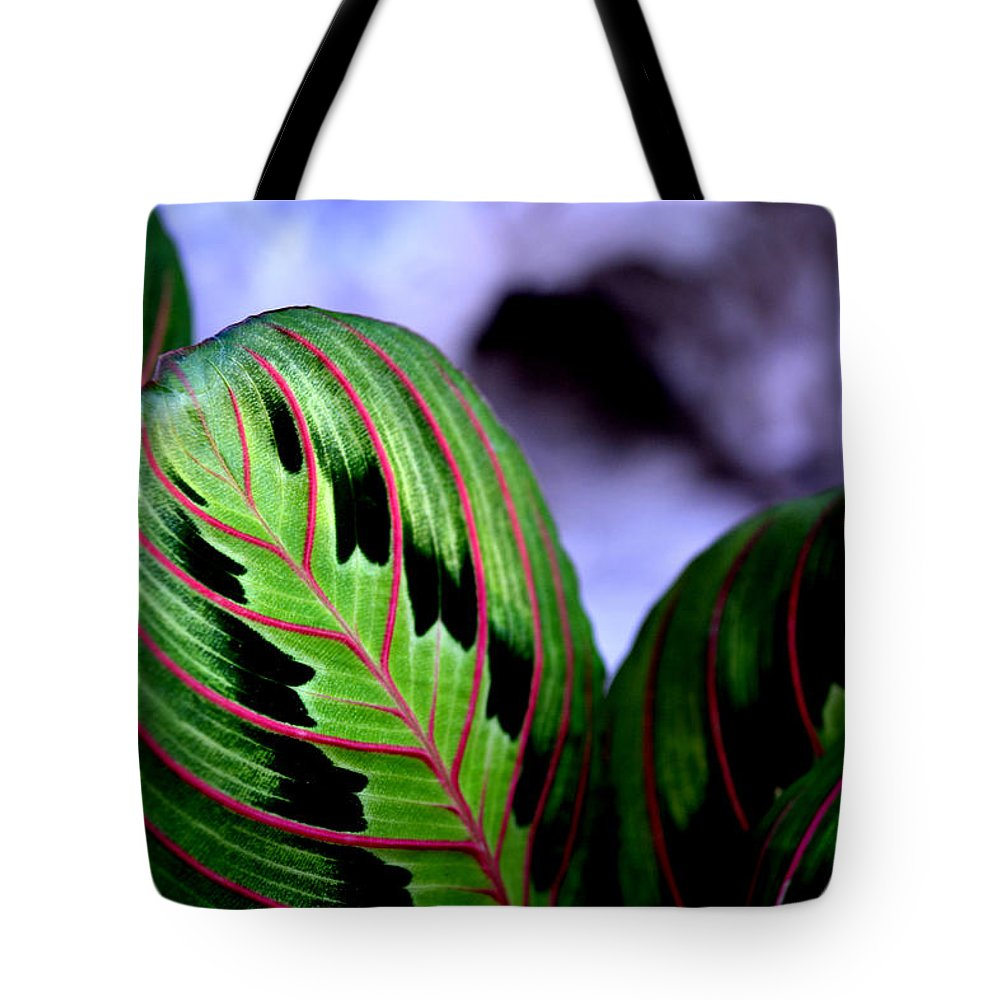 Garden Tote Bag featuring the photograph Exotic Plant by Reva Steenbergen