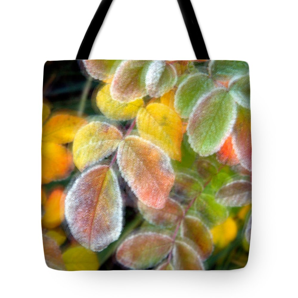 Canada Tote Bag featuring the photograph Eye Candy by Doug Gibbons