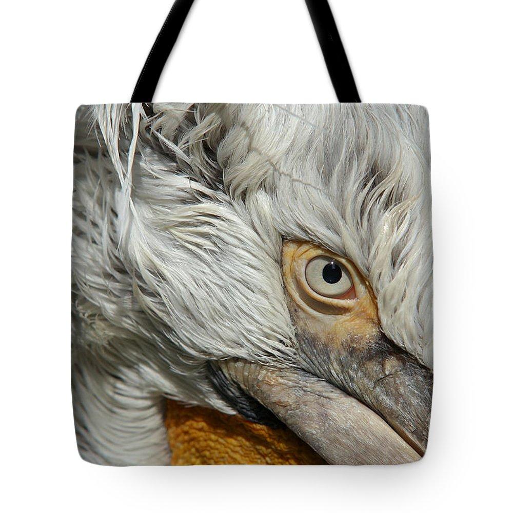 Dalmatian Pelican Tote Bag featuring the photograph Eye by Michal Boubin