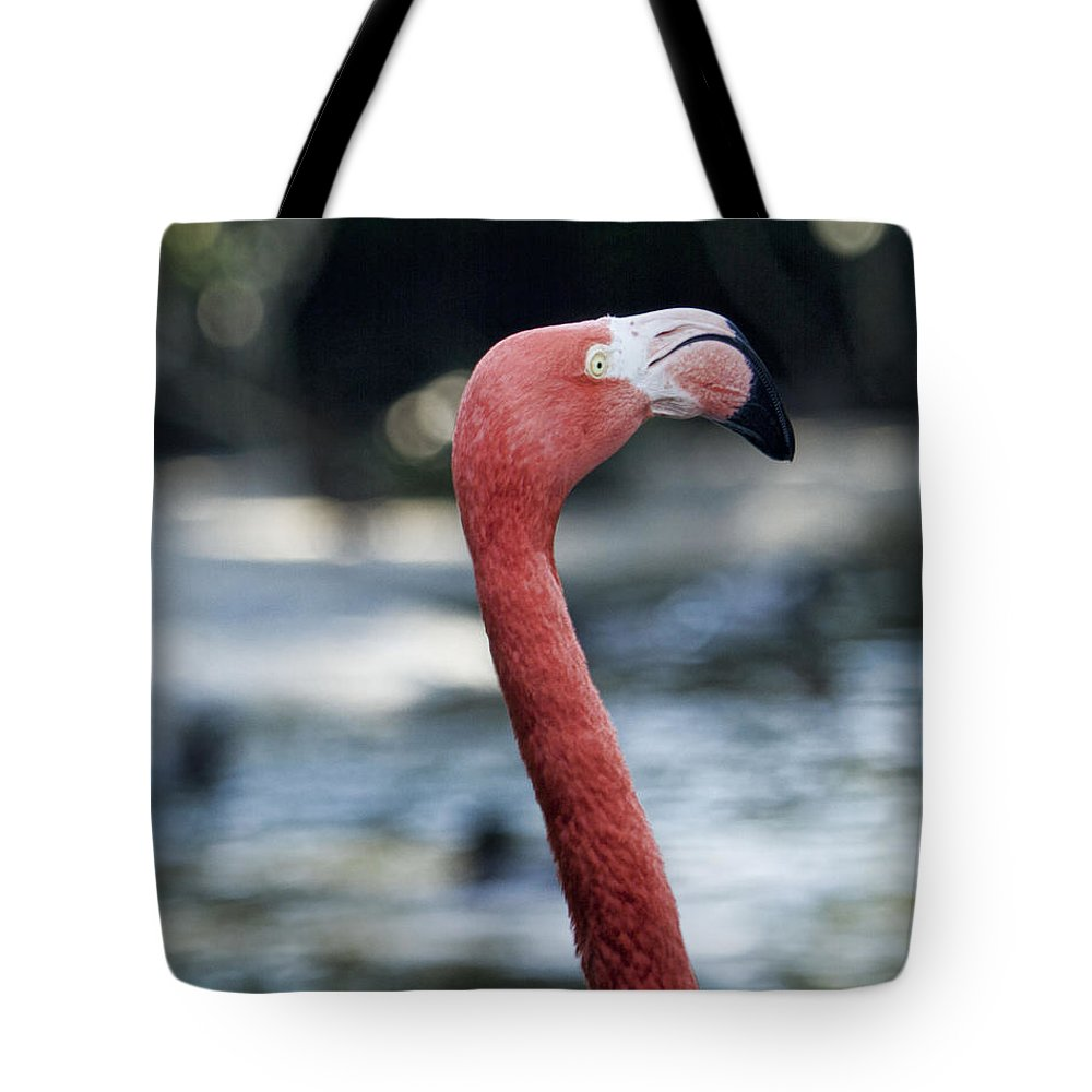 Flamingo Tote Bag featuring the photograph Eye Of The Flamingo by Sissy Schneiderman