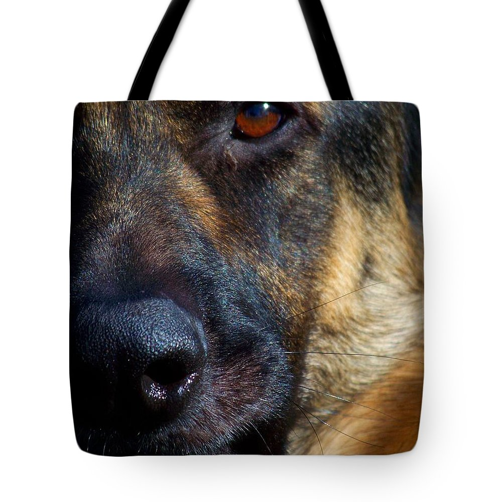 Dog Tote Bag featuring the photograph Eye Of The Shepherd by Jai Johnson
