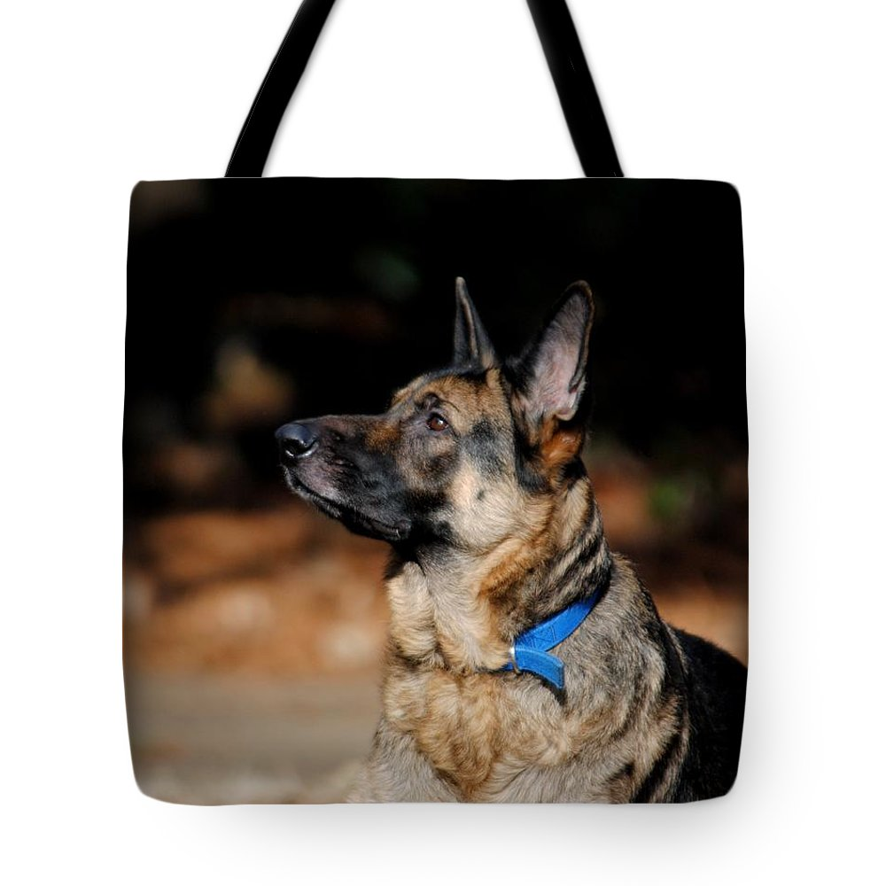 Dog Tote Bag featuring the photograph Eye On The Ball by Jai Johnson