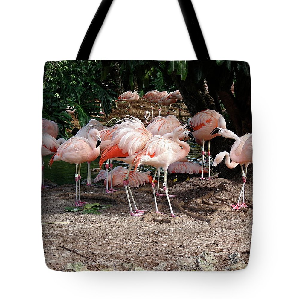 Flamingo Tote Bag featuring the photograph Fabulous Flamingos by Brett Winn