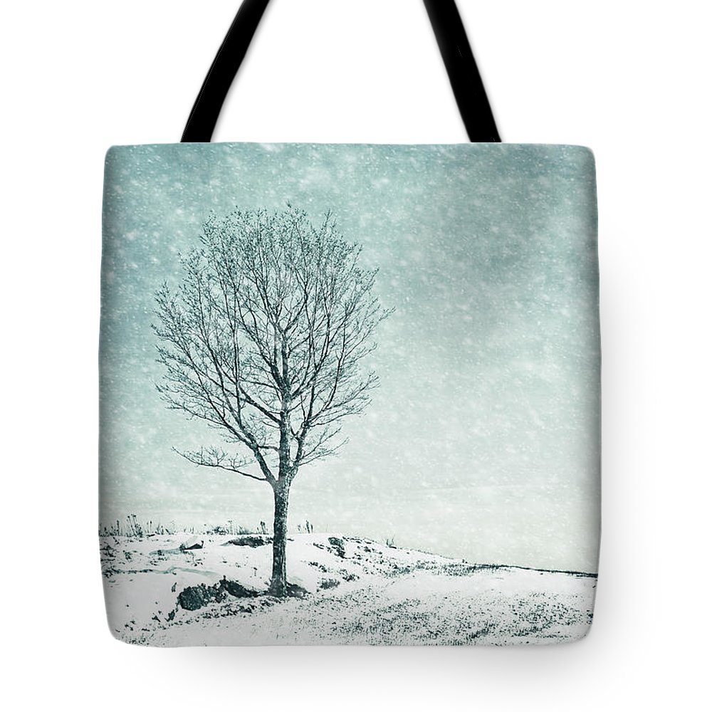 Kremsdorf Tote Bag featuring the photograph Faded Into Winter by Evelina Kremsdorf