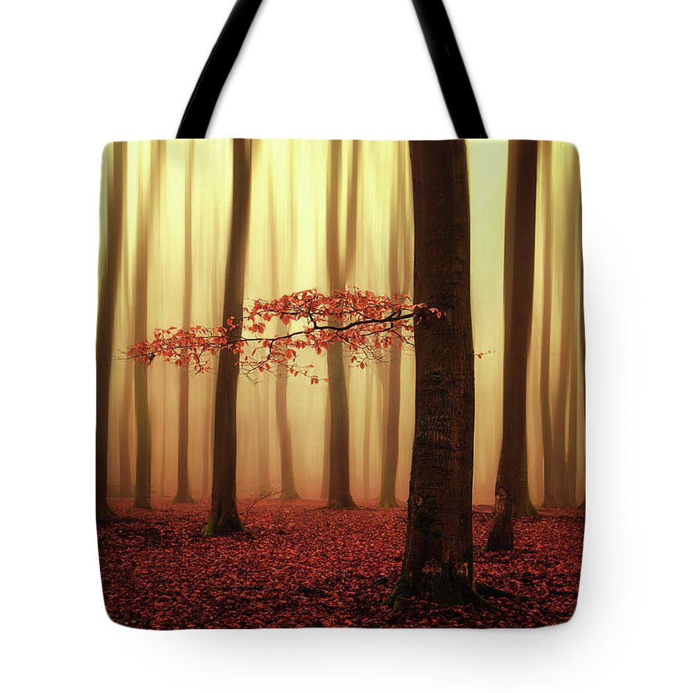 Winter Tote Bag featuring the photograph Fading Memories... by Martin Podt