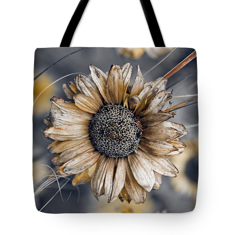 Aster Tote Bag featuring the photograph Fading Oxeye by Venetta Archer