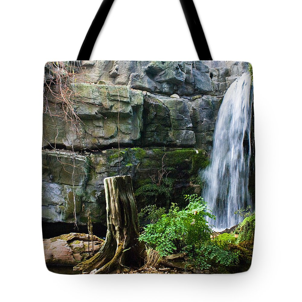 Waterfall Tote Bag featuring the photograph Fairy Waterfall by Douglas Barnett