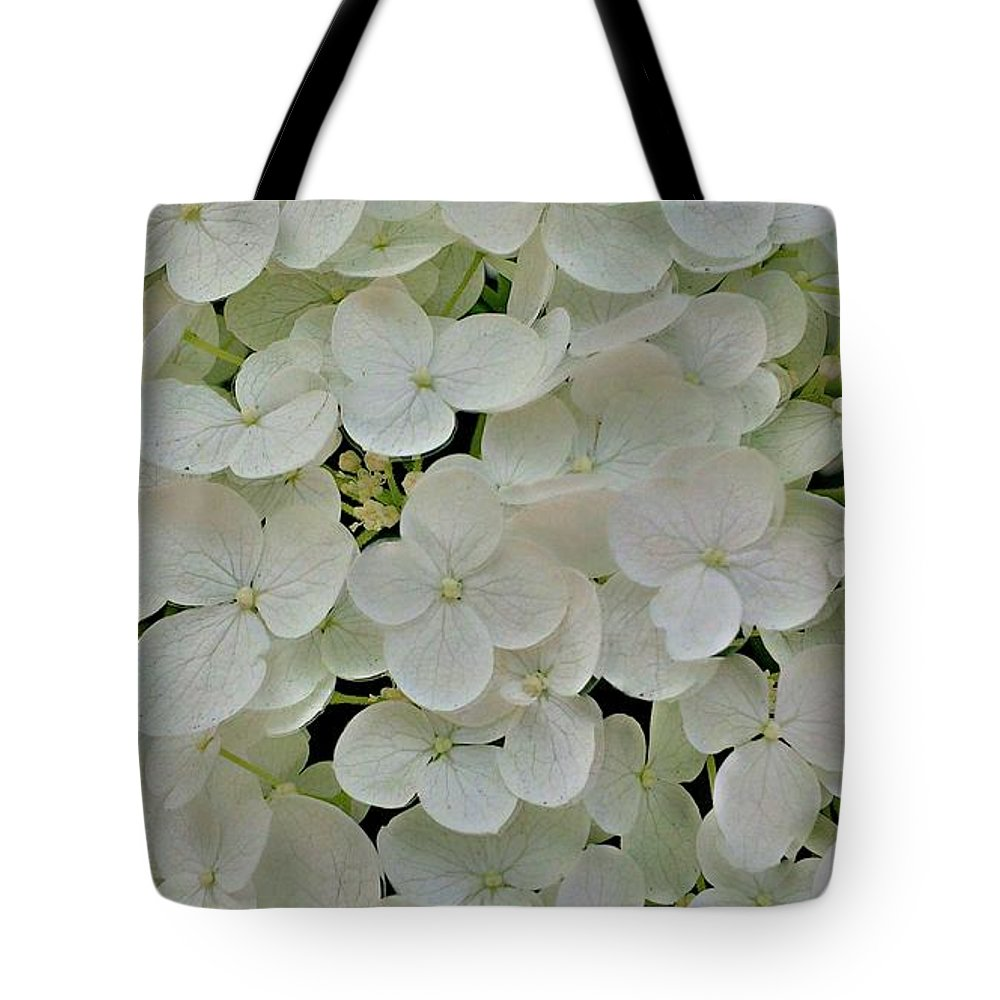 Flower Tote Bag featuring the photograph Fairy White Flowers by Jennie Perry