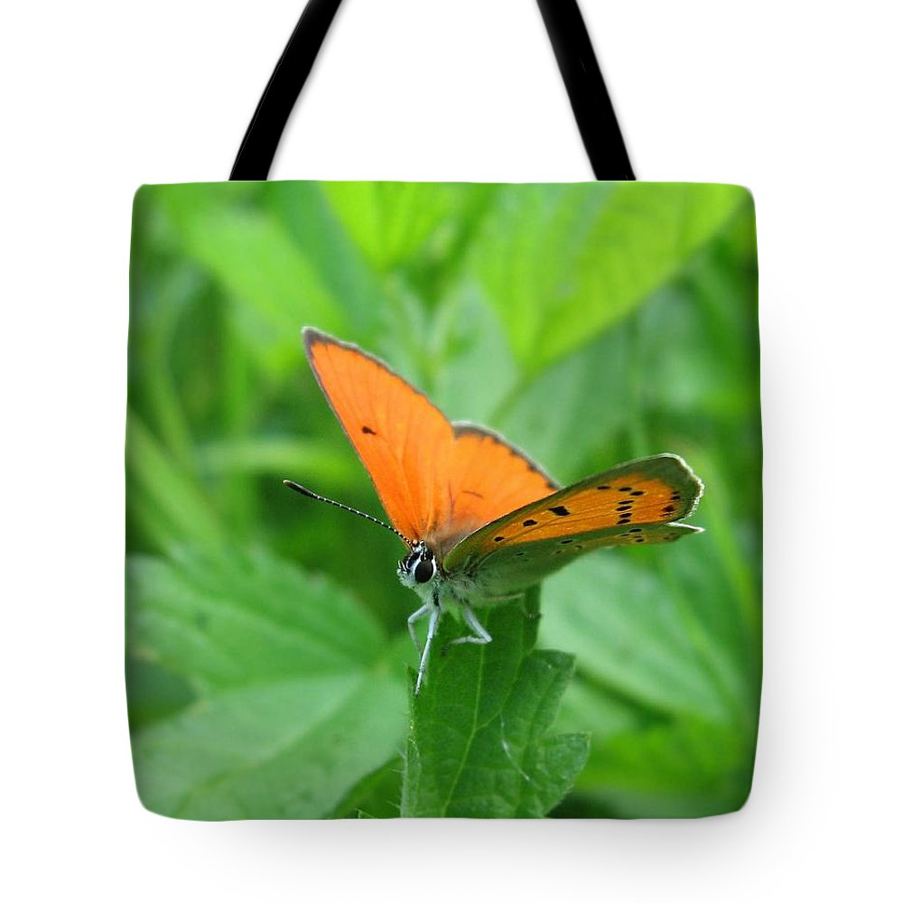 Macro Tote Bag featuring the photograph Fairy by Yuri Hope