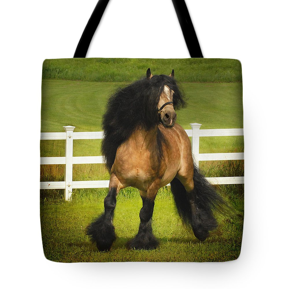 Horses Tote Bag featuring the photograph Falcon C2 by Fran J Scott