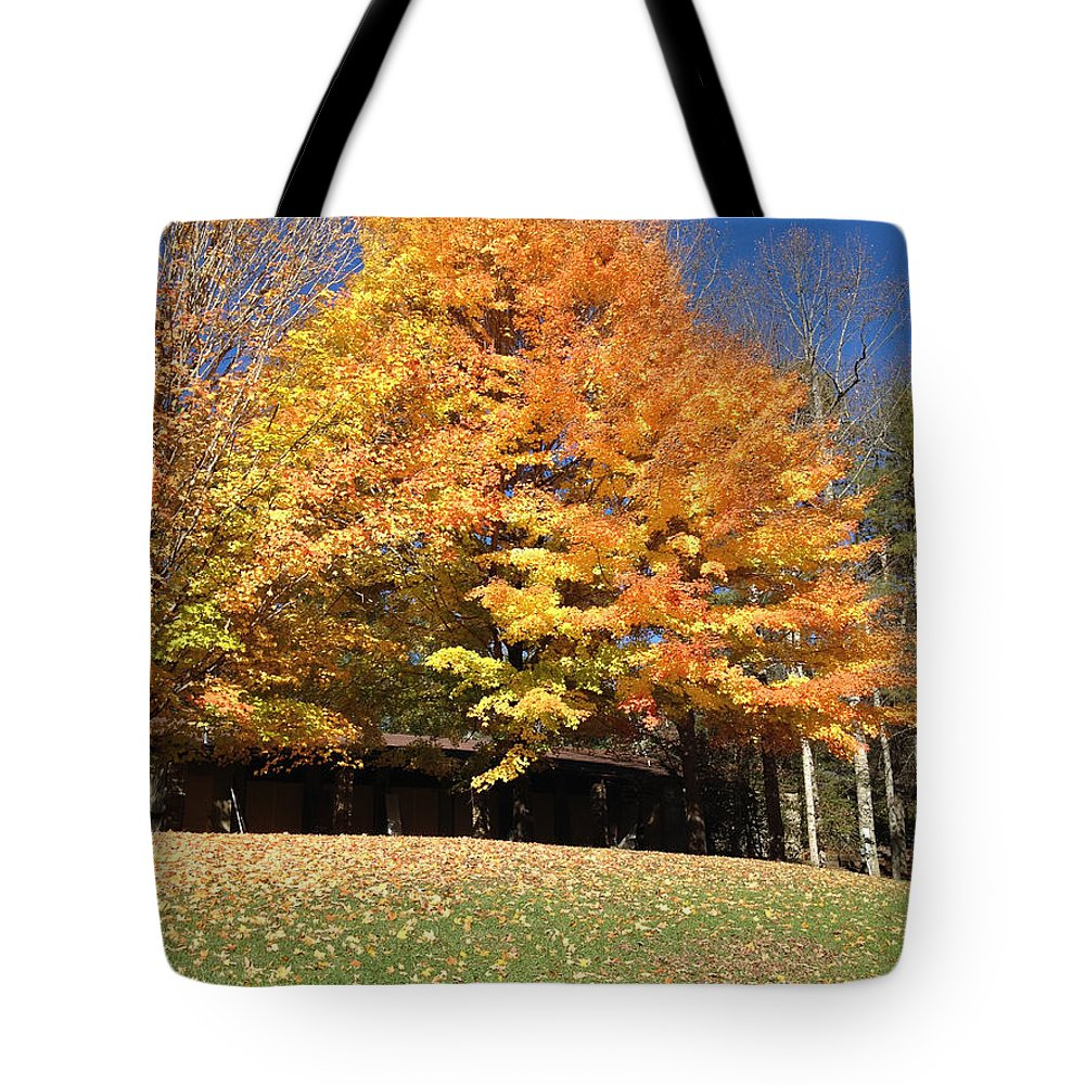 Nature Tote Bag featuring the photograph Fall At Kanuga by Kristine Nutt