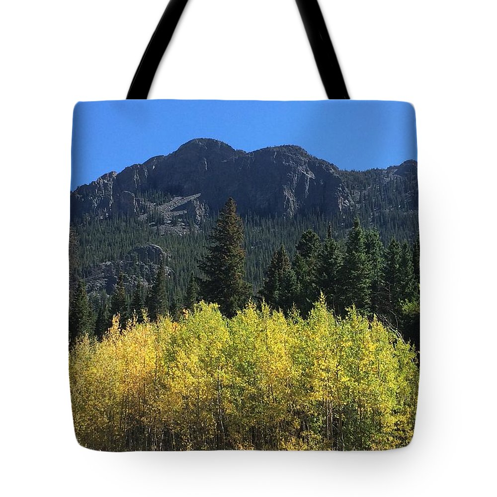 Landscape Tote Bag featuring the photograph Fall At Twin Sisters by Kristen Anna